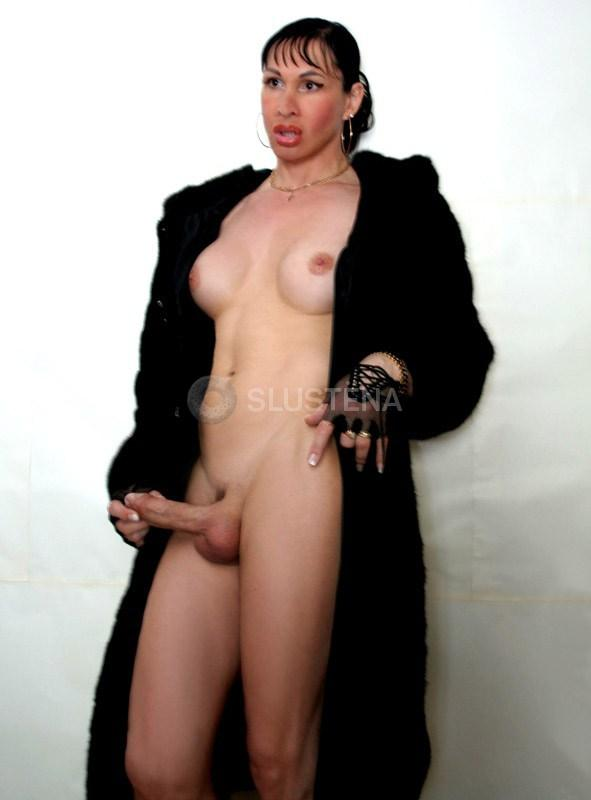 Транс леди проститутки
